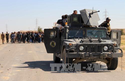 Estados Unidos envía más soldados a Iraq para combatir el Estado islámico - ảnh 1