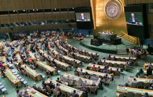 ONU insta a los países a aplicar con urgencia objetivos de desarrollo sostenible - ảnh 1