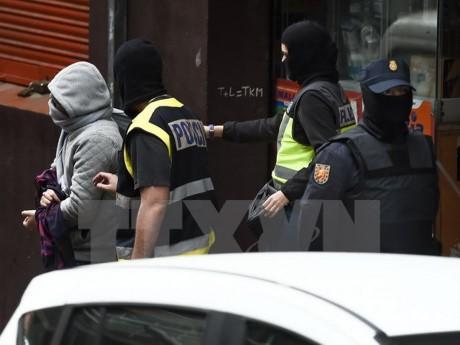 España extradita sospechoso de terrorismo a Francia - ảnh 1