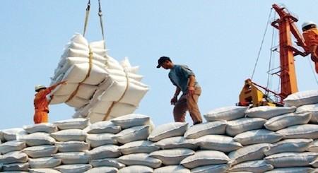 Exportación de alta calidad, nueva orientación para el sector arrocero vietnamita   - ảnh 1