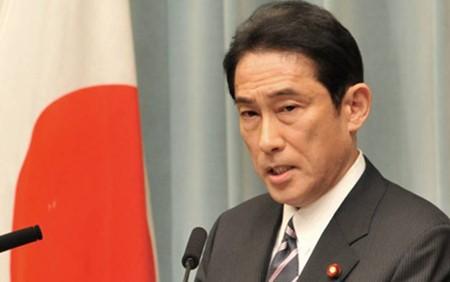 Japón da a conocer plan de asistencia para la subregión del Mekong - ảnh 1