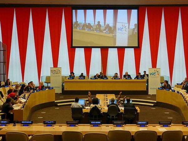 Destaca Vietnam renovación de políticas en cumplimiento de Agenda de la ONU - ảnh 1