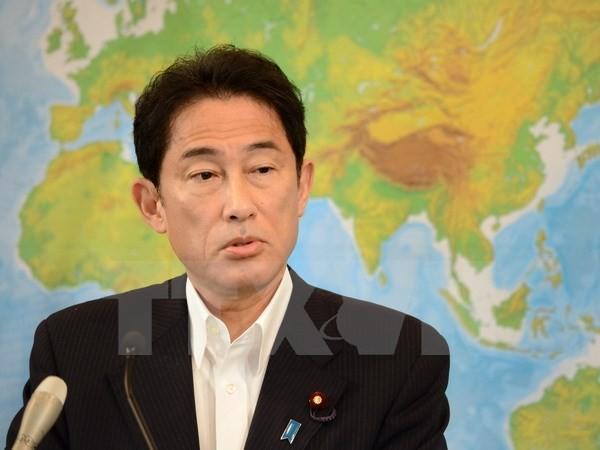 Laos y Japón llaman a resolver por medios pacíficos disputas en el Mar Oriental  - ảnh 1