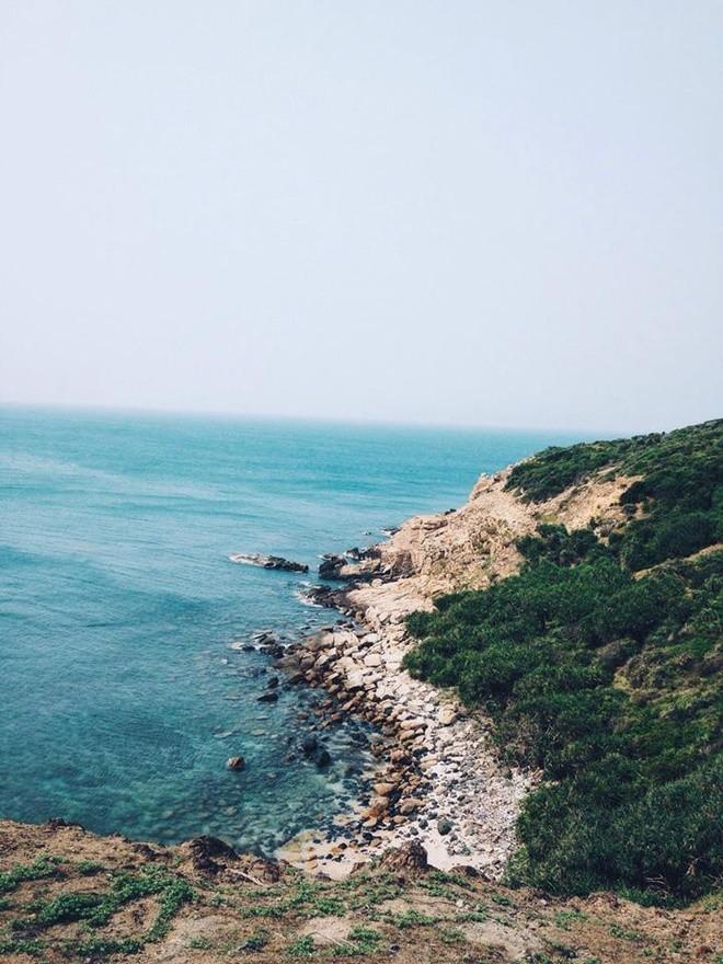 Bienvenidos a isla Robinson, nuevo destino turístico de aventura de Vietnam - ảnh 4