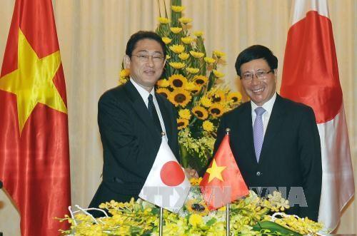 VIII Reunión de Cooperación Vietnam – Japón resalta lazos bilaterales de cooperación multifacética - ảnh 1