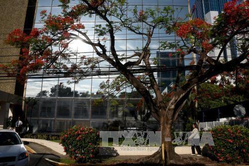 """Mossack Fonseca inicia acciones legales por publicación de """"Panama Papers"""" - ảnh 1"""