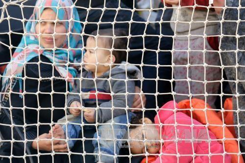 Otros cientos de emigrantes salvados en las aguas cercanas a Italia - ảnh 1