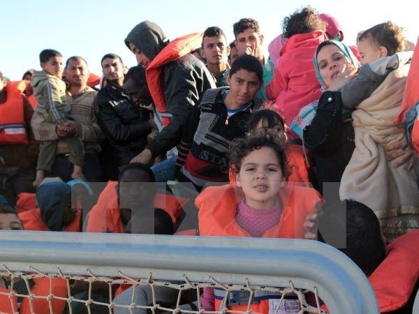 Aumenta el número de refugiados en Italia  - ảnh 1