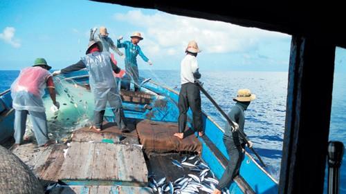 Asociación de la Pesca de Vietnam impugna prohibición china de captura de mariscos en Mar Oriental - ảnh 1