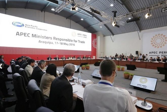 Inauguran en Perú Conferencia de Ministros de Comercio de APEC  - ảnh 1