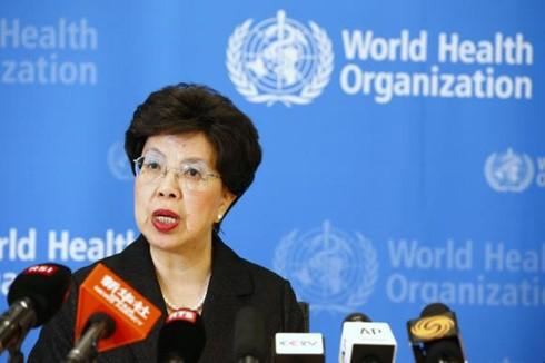 OMS: enfermedades infecciosas son amenazas globales - ảnh 1