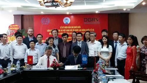 Vietnam busca renovar cooperativas por un desarrollo sostenible - ảnh 1