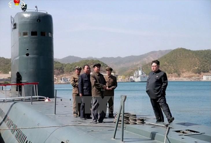 Unión Europea refuerza nuevas sanciones contra Corea del Norte - ảnh 1