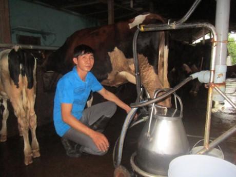 Agricultores de Ciudad Ho Chi Minh participan en innovación tecnológica  - ảnh 1