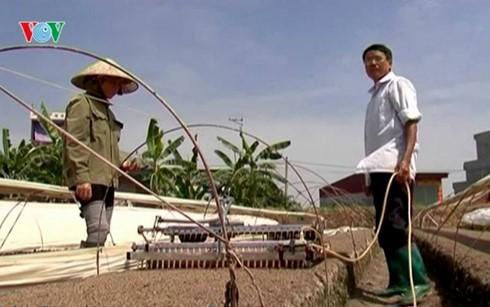Agricultores de Ciudad Ho Chi Minh participan en innovación tecnológica  - ảnh 2