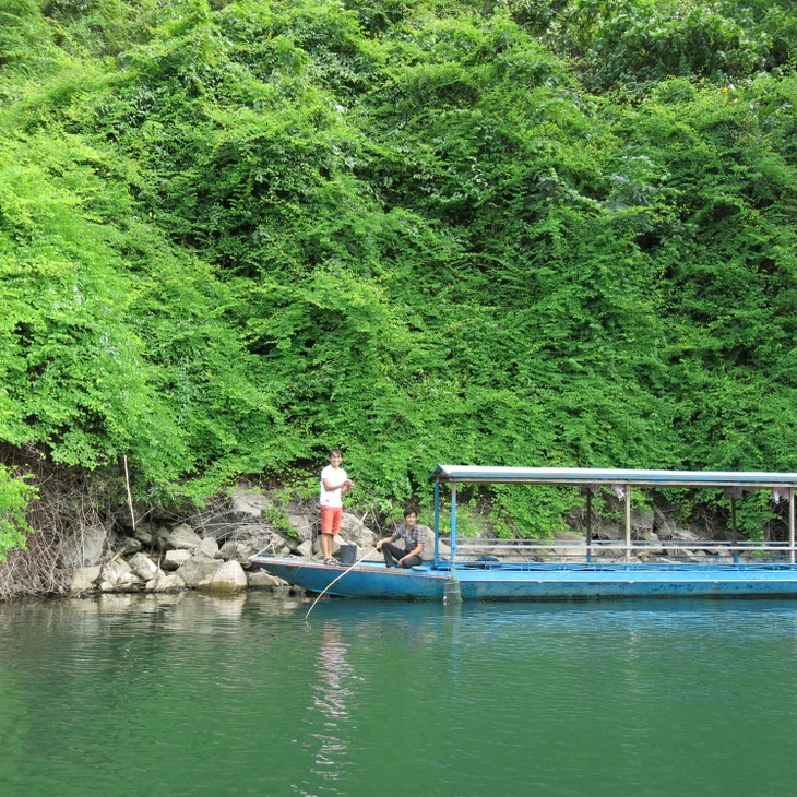 Belleza del lago de Ba Be - ảnh 4