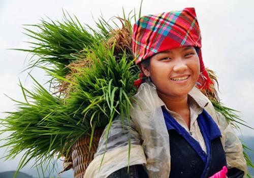 Vietnam aprovecha recursos culturales para desarrollo sostenible  - ảnh 3