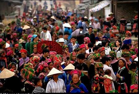 Colores de los mercados vietnamitas - ảnh 2