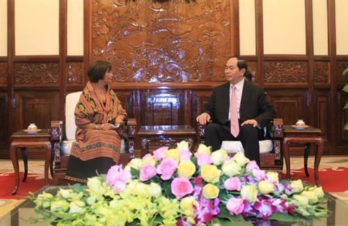 Presidente de Vietnam recibe a nuevos embajadores extranjeros  - ảnh 1