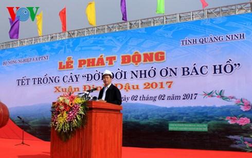 Presidente vietnamita lanza Festival de Siembra de Árboles 2017  - ảnh 1