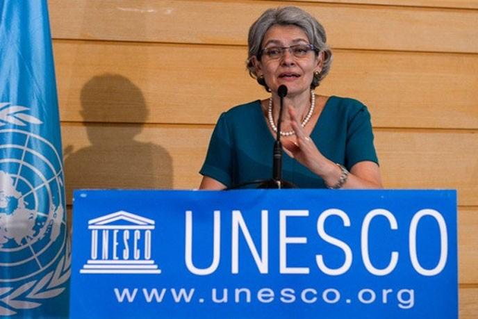 Unesco apoyará reinserción de las FARC-EP a la educación - ảnh 1