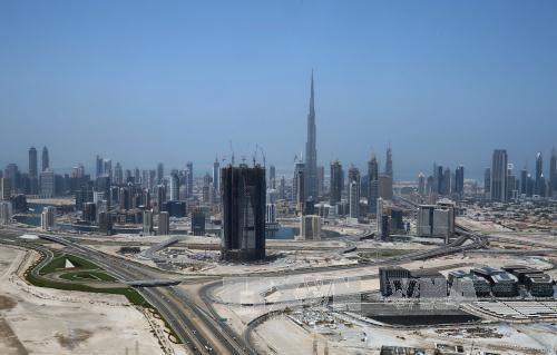 Egipto y Emiratos Árabes Unidos establecen mecanismo bilateral de consulta política  - ảnh 1