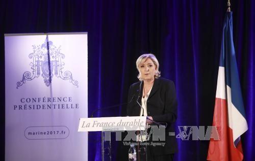 Líder ultraderechista francesa anuncia comienzo de su carrera electoral a la presidencia - ảnh 1