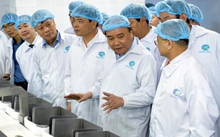 Primer ministro de Vietnam visita empresa Minh Phu  - ảnh 1