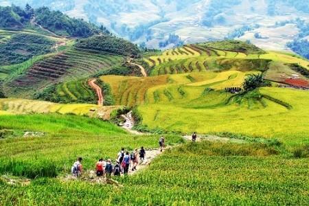 Lao Cai acoge Año Nacional de Turismo 2017  - ảnh 1