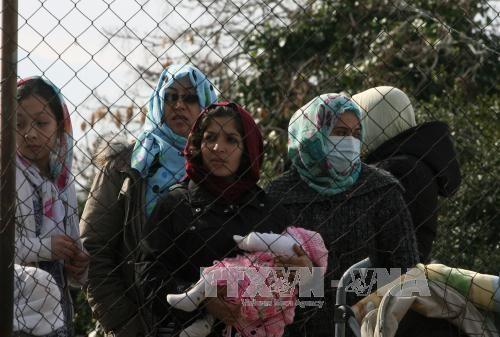 Europa necesita inmigrantes para desarrollar su economía - ảnh 1