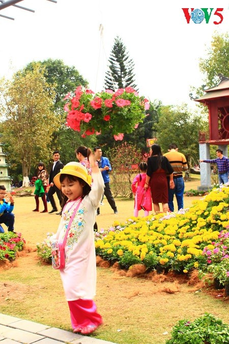 Flores primaverales alegran zona urbana ecológica - ảnh 13