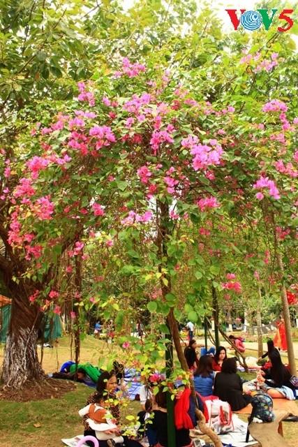 Flores primaverales alegran zona urbana ecológica - ảnh 14