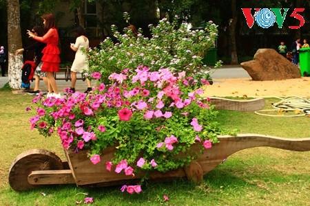 Flores primaverales alegran zona urbana ecológica - ảnh 5
