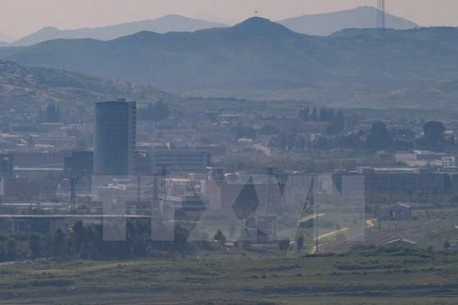 Corea del Sur rechaza reanudar operaciones del parque industrial Kaesong - ảnh 1
