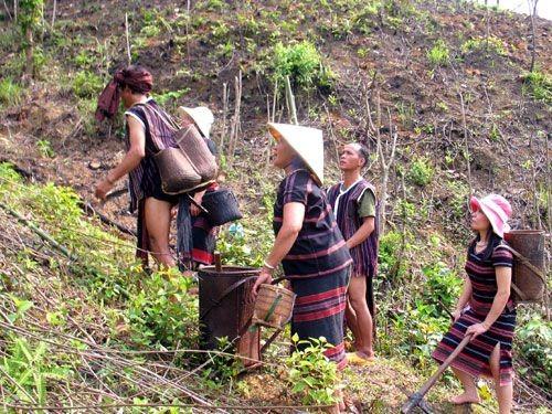 World Vision destina 1,8 millones de dólares a personas de pocos recursos en Quang Tri - ảnh 1