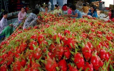 Vietnam por incrementar exportaciones de frutas y vegetales - ảnh 1