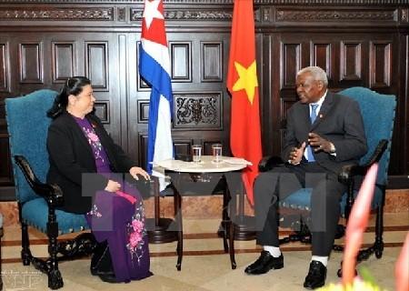 Vietnam y Cuba reiteran voluntad de fortalecer nexos parlamentarios - ảnh 1