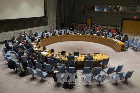 Corea del Norte rechaza condena del Consejo de Seguridad de la ONU - ảnh 1