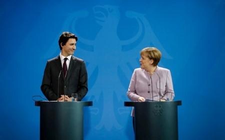 Exaltan importancia de la OTAN y de la coherencia de la Unión Europea para Estados Unidos - ảnh 1