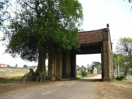 Rasgos típicos de las aldeas en el Delta del río Rojo - ảnh 1
