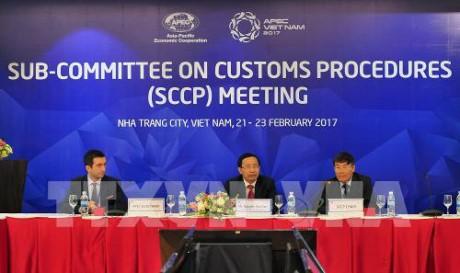 APEC busca mayor conexión aduanera y alternativa financiera frente a desastres naturales - ảnh 1