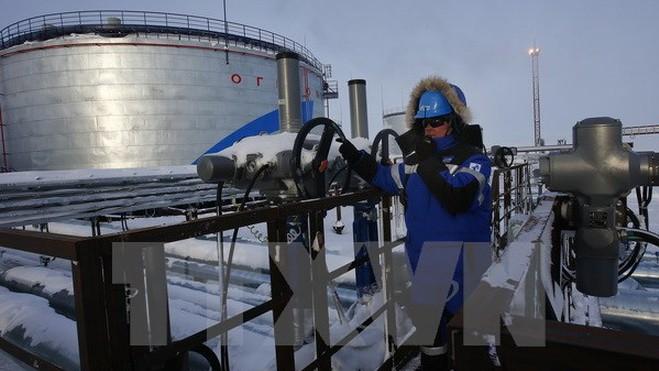Rusia y Libia llegan a un acuerdo sobre la cooperación en materia del petróleo  - ảnh 1