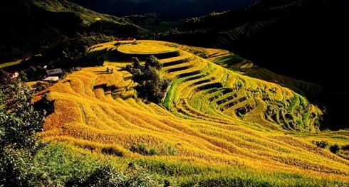 Yen Bai, parada atractiva del noroeste de Vietnam - ảnh 1
