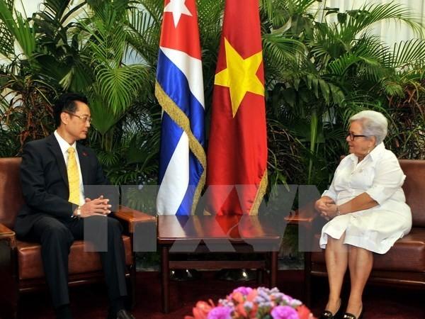 Vicepresidenta cubana confía en el fortalecimiento de vínculos con Vietnam - ảnh 1