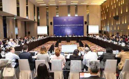 Prosiguen en Nha Trang las primeras reuniones de alto nivel de APEC  - ảnh 1