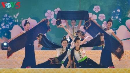 Festival de la Flor Bauhinia 2017: convergencia de culturas de minorías étnicas - ảnh 1