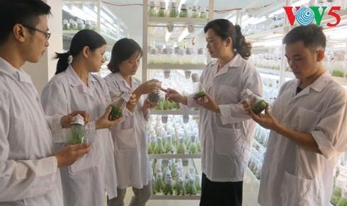 Investigadoras vietnamitas apasionadas de la ciencia - ảnh 1