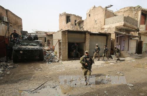 Fuerzas de seguridad iraquíes liberan otros puntos de Mosul - ảnh 1