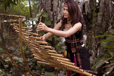 Instrumentos musicales de bambú, un orgullo de Vietnam    - ảnh 1