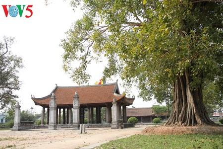 Pagoda Keo: singularidad arquitectónica de la provincia norteña de Thai Binh - ảnh 1